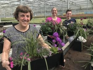 NHS vertical garden planting volunteers