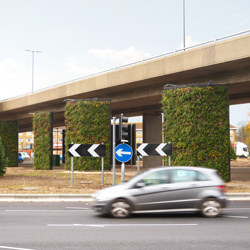 roundabout living green wall, Southampton