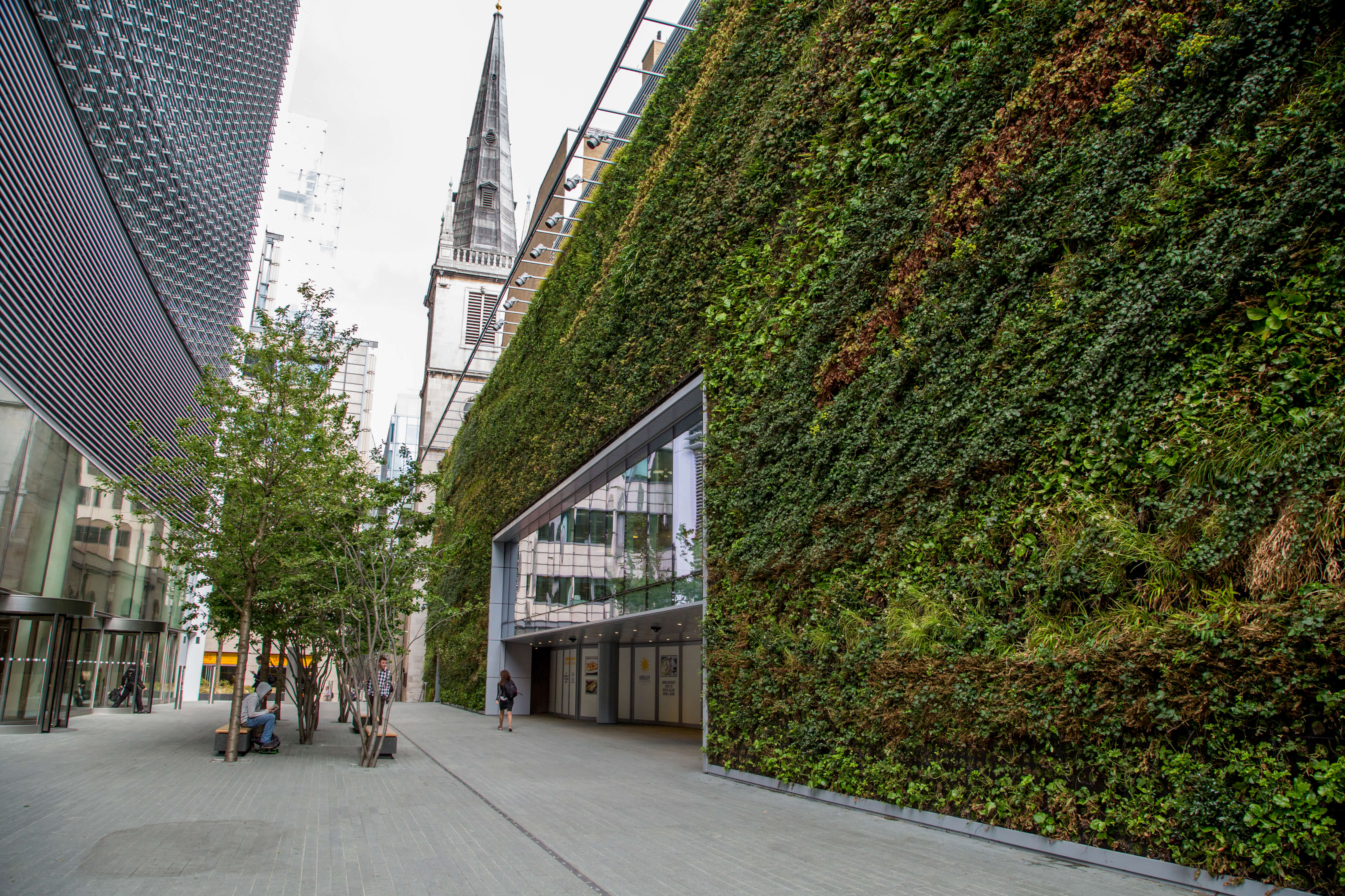 20 fenchurch street biotecture - Building a living wall ...