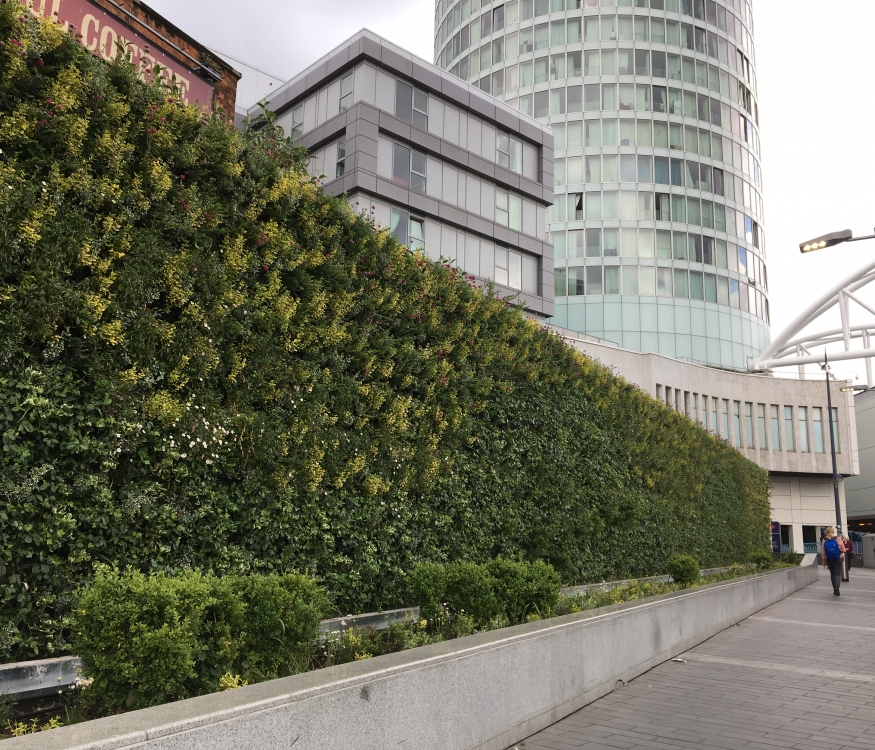 Birmingham Living Wall at New Street Station