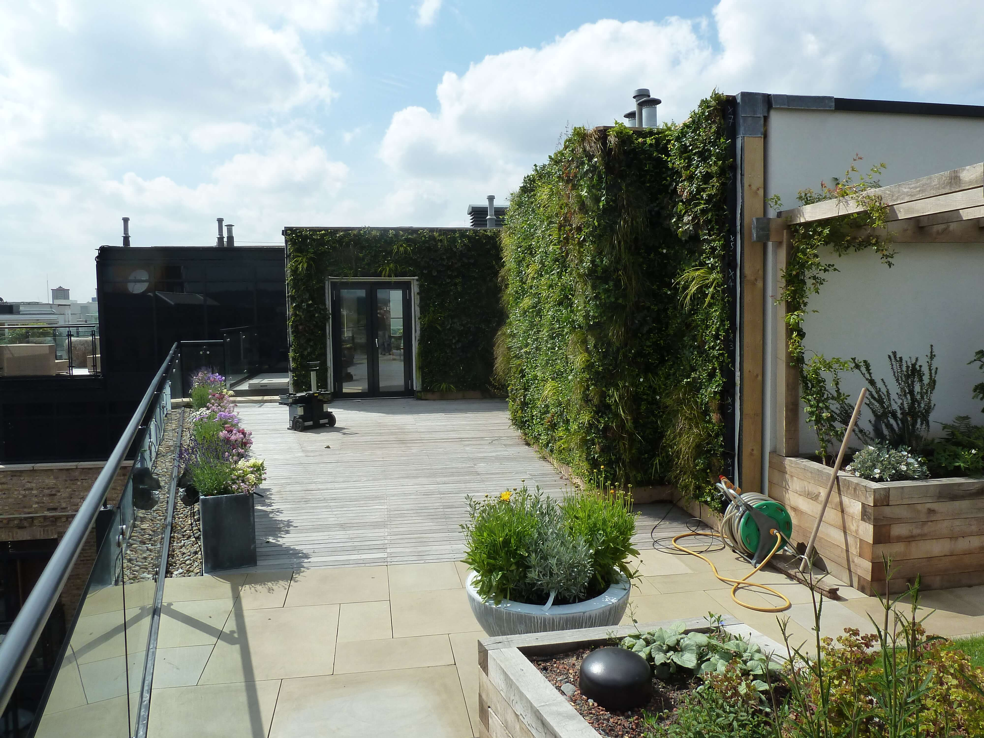 Lush Green Private Roof Terrace Living Wall, Camden ...