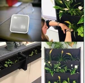 The PlantBox in use in the classroom